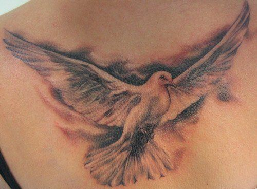 Dove tattoo designs are a symbol of hope, peace and calm