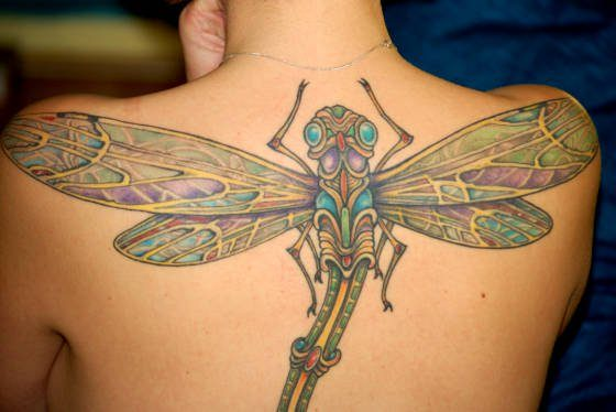 A colorful and detailed insect tattoo of a dragonfly perched on this girls back and shoulders