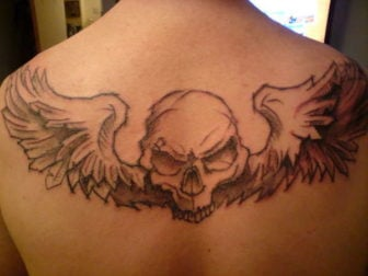 A skull and wings tattoo design in an illustrated, hand drawn art style