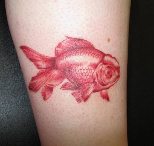 An oranda goldfish tattoo in red ink