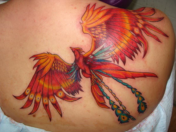this creative phoenix tattoo uses blue feathers to accentuate the fire bird s red and gold. Black Bedroom Furniture Sets. Home Design Ideas