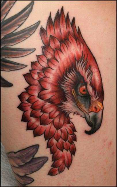 An amazing profile tattoo of a hawks head witha  cocky expression by Shawn Barber