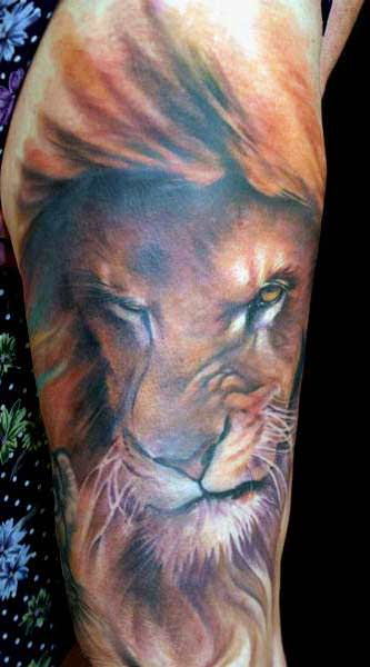 A snarling lion sneers with contempt in this beautiful lion tattoo