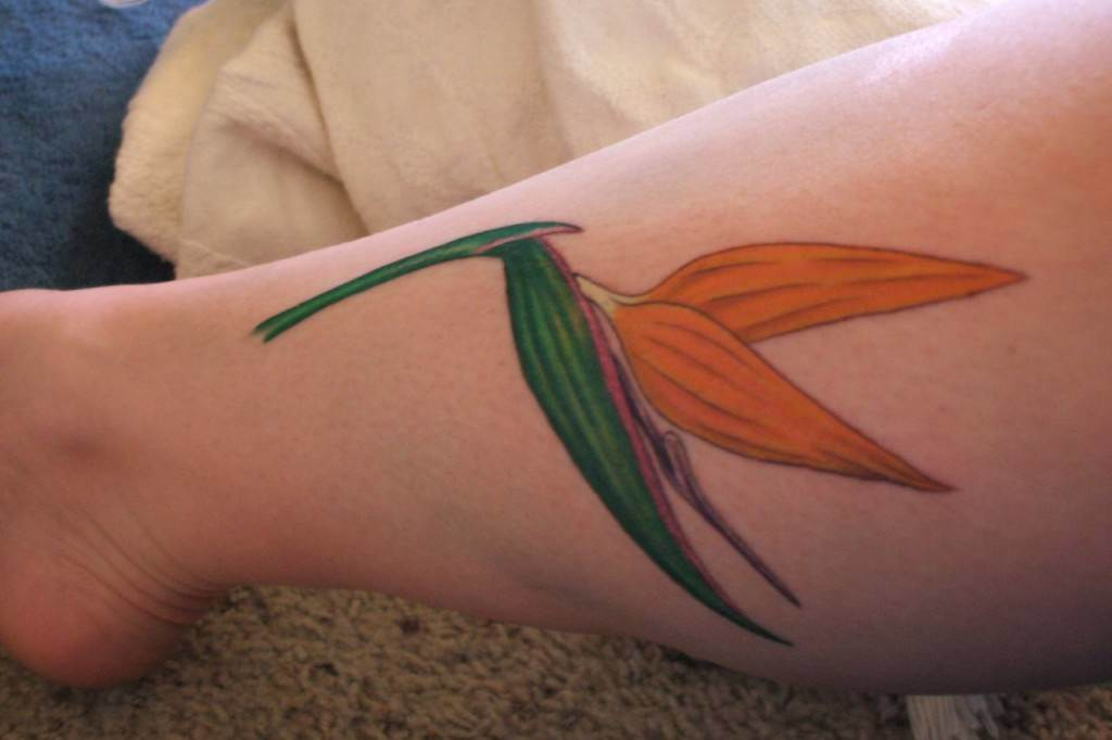 The bird of paradise flower can also look like a bird in flight, as shown in this tattoo design
