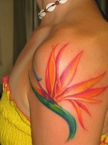 This colorful bird of paradise flower tattoo is a beautiful choice for women
